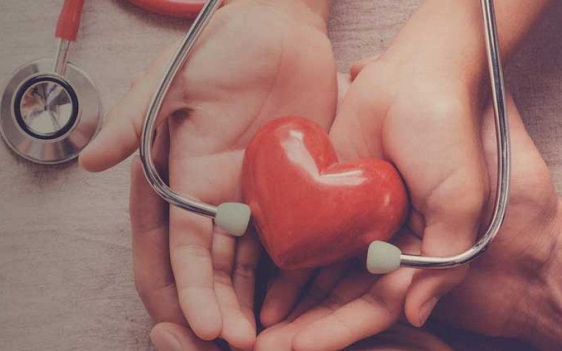 hands holding a plastic heart with stethoscope